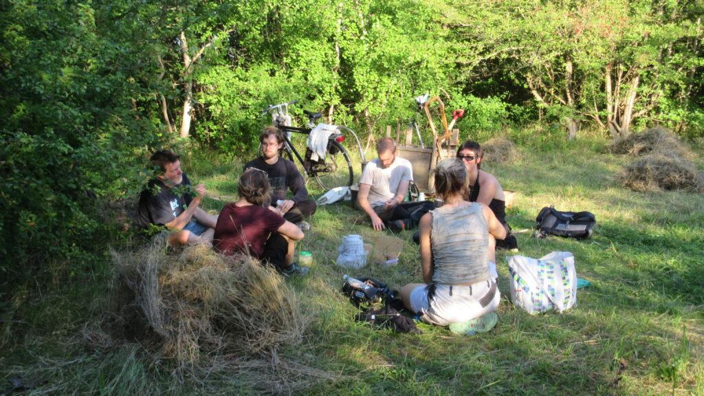 Pause under høslæt d. 1-9-2021. Fra venstre Claus, Autumn, Casper, Nico, Sascha og Isha (Nina var gået). Foto: Eva Kjeldsen
