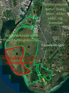 Forslag til selvforvaltende natur på Kalvebod Fælled og tilstødende arealer
