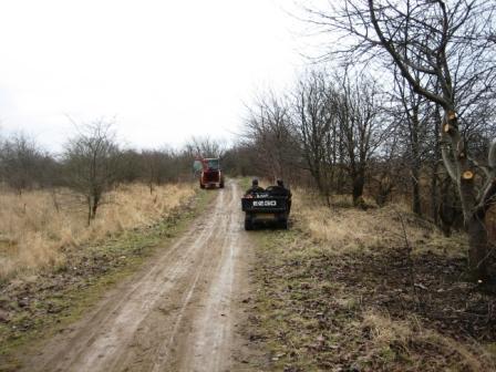center-for-park-og-natur-beskaerer-09