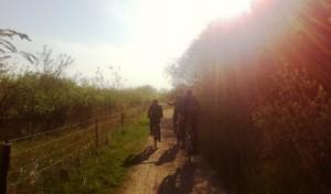 cykeltur Tippen til sydhavnstippendk
