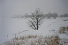 Sne-pa-syd-Tippen.-Foto-Claus-Andersen-2014.
