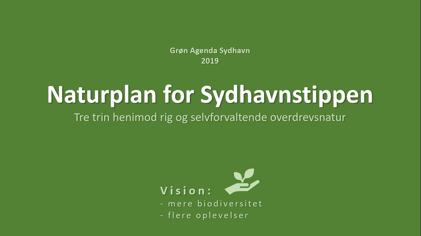 Naturplan for Sydhavnstippen 2019, side 1