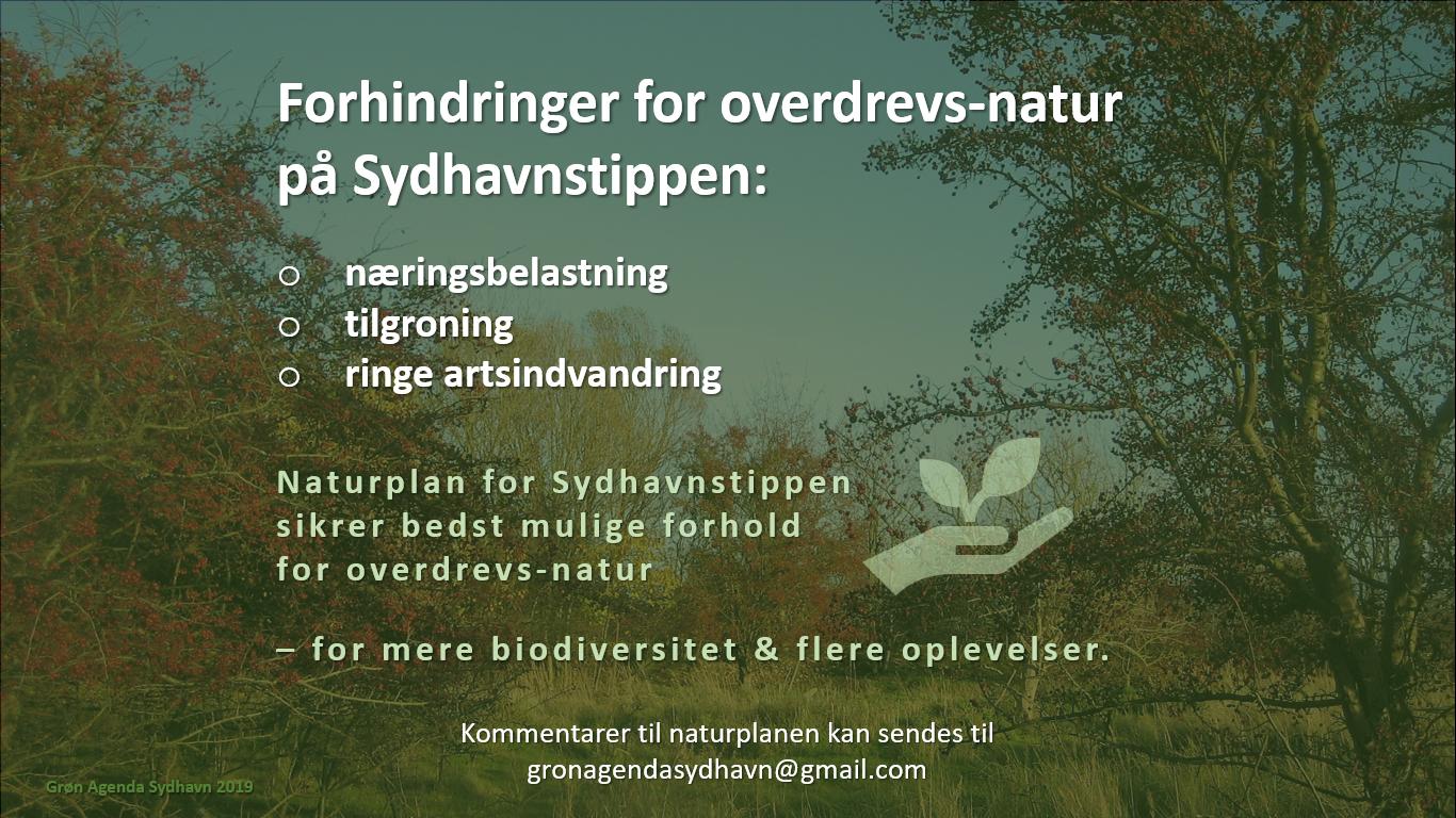 Naturplan for Sydhavnstippen 2019, side 8