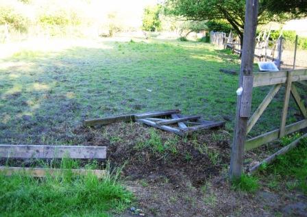 hestefold-ved-bd-2008.jpg