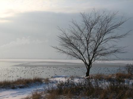Vinterudsigt fra Tippens sydspids.