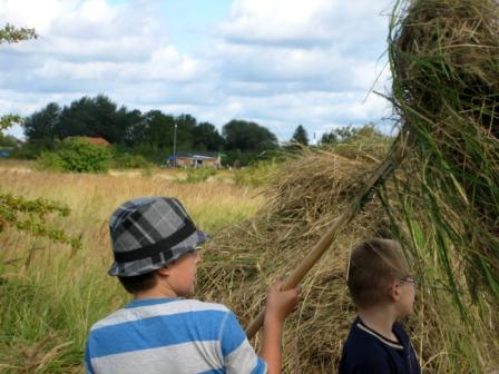 naturskoleindvielse-hoeslaet-paa-tippen-09-1